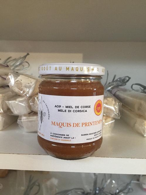 Miel de printemps Corse AOP