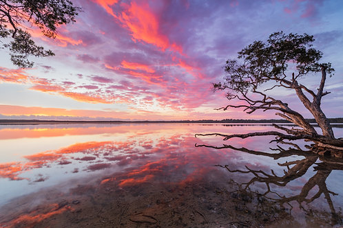 Lake Weyba Sunrise, Queensland