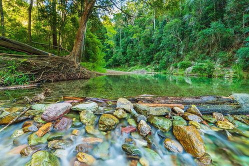 Booloumba Creek, Conondale National Park, Queensland