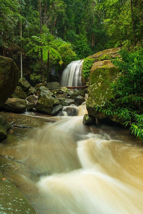 Serenity Falls, Buderim, Queensland