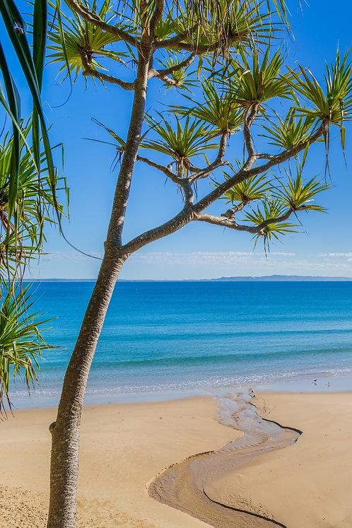 Little Cove Beach, Noosa, Queensland
