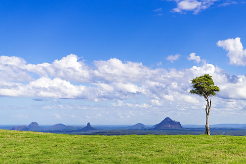 One Tree Hill Maleny, Queensland