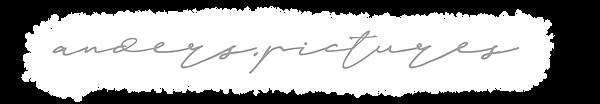 logo_hintergrund.png