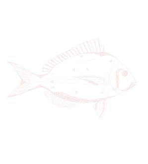 Dwyers Seafood fish.png