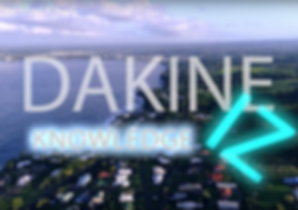 DAKINE CANVAS 2 (1).png