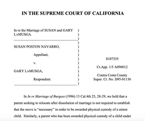 Marriage of LaMusga Supreme Court pleading page