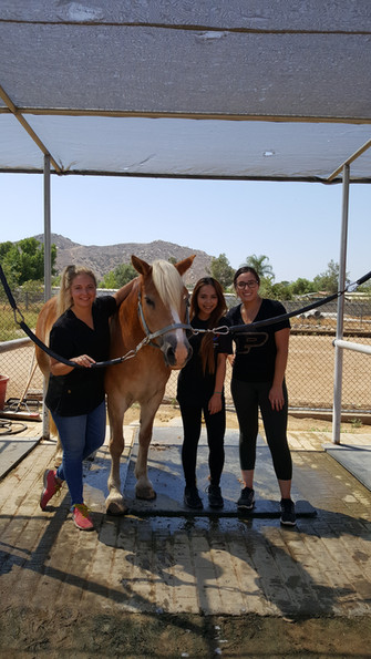 Students at NDR Therapeutic Riding in Norco