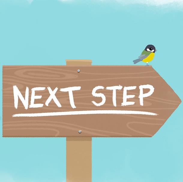 Next step shot.png