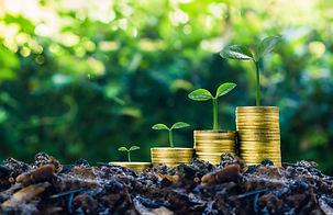 green-bonds-assets-investment-810x524.jp
