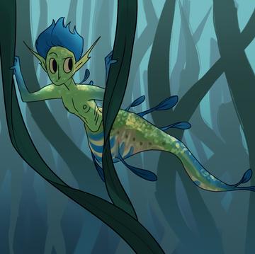 Weedy, Sea Dragon