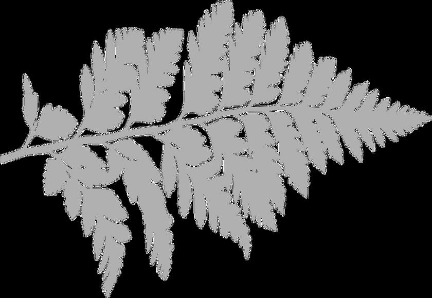 fern-1837450_1280_edited_edited_edited.p
