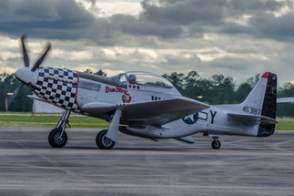 "TP-51D Mustang ""Bum Steer"""