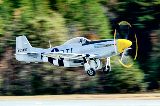 "P-51D Mustang ""Angel's Playmate"""