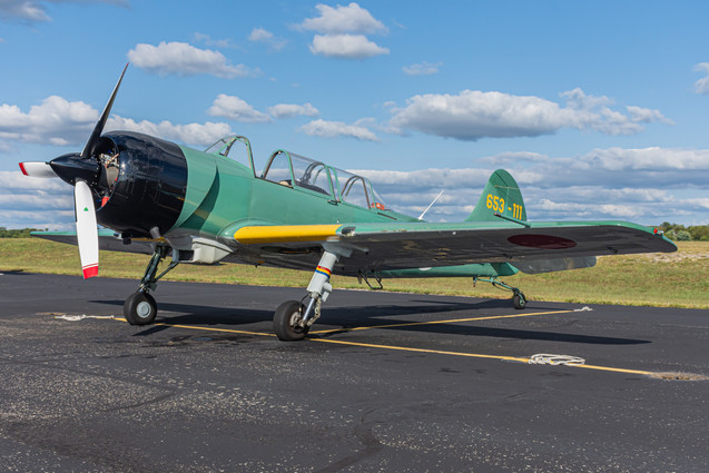 Yak-52 TW