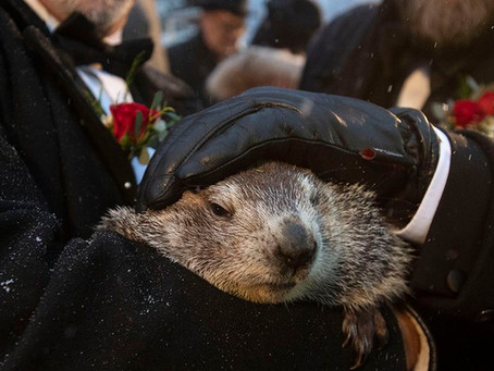 What is Groundhog Day Anyway?