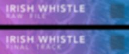 Irish Whistle.png