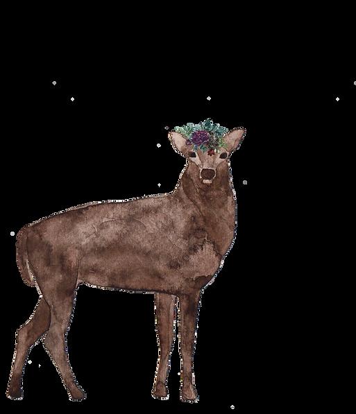 Deer 4.png