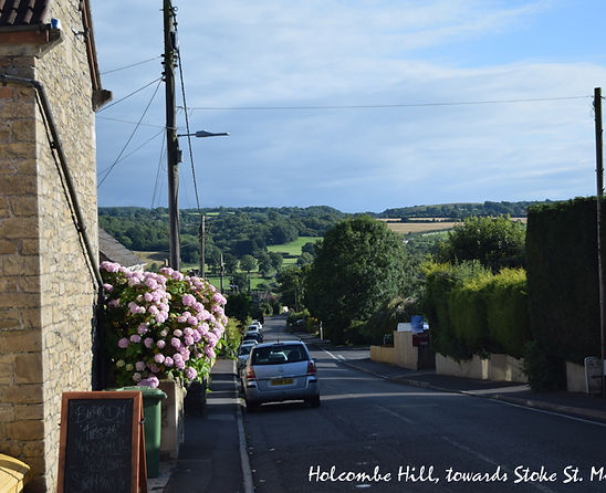 Photo taken from the top of Holcombe Hill looking down the road