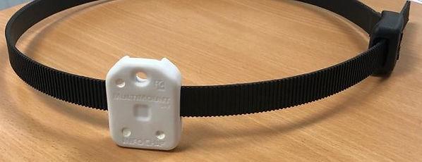 19mm with RFID tag_edited.jpg