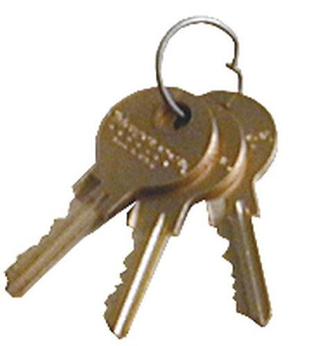 Replacement Flat Key & Lock for Refrigerator Lock Box (2 Keys)