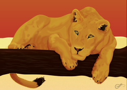 2014-02-19 13_00_51-LionesseRedesign.ai_ @ 50% (RGB_Preview).png