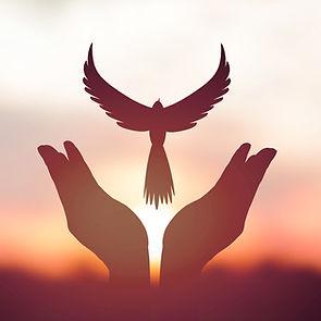 BirdhandsWS.jpg
