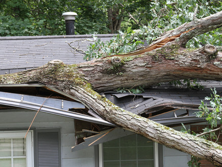 Blog post for property company regarding storm related insurance claims