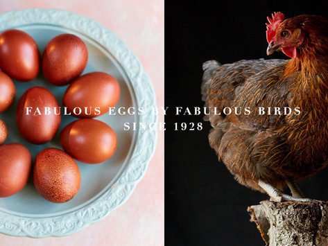 Win a month's supply of Clarence Court eggs