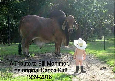 Bill Mortimer tribute image bull and boy