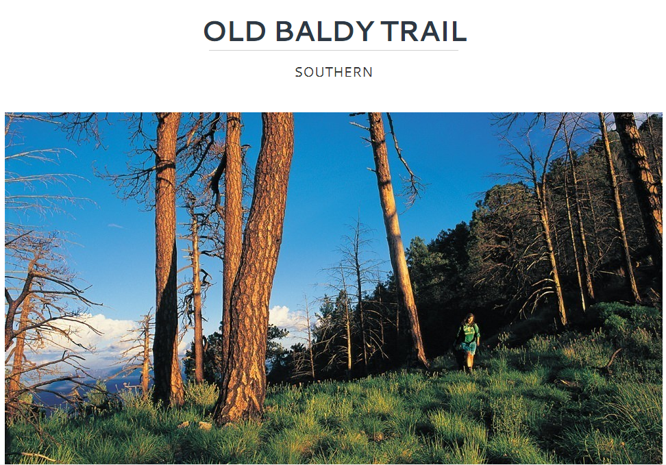 Old Baldy Trail.PNG