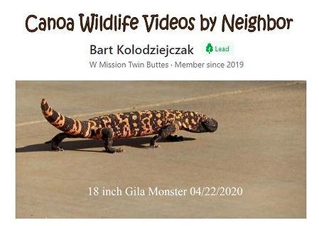 Wildlife videos Bart Kolodziejczak image