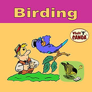 Birding image.jpg