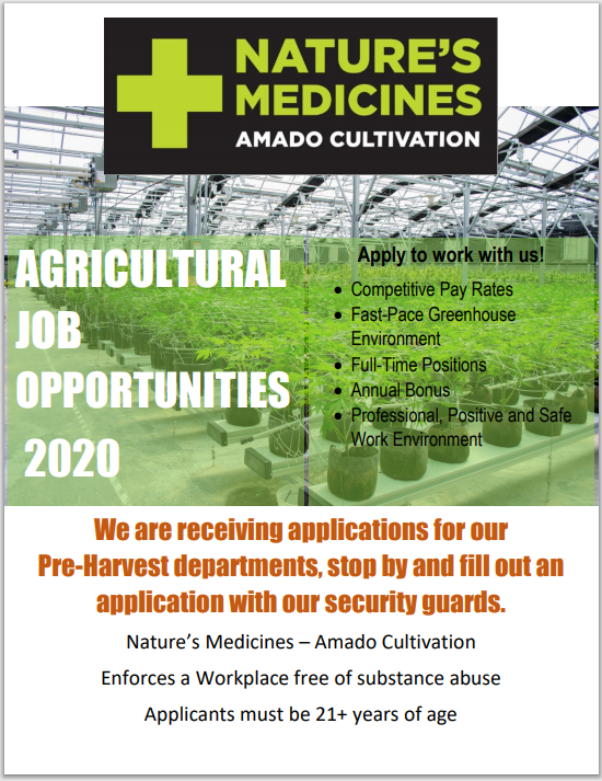 Amado Management Job ad June 2020.PNG