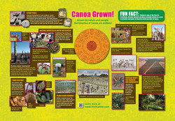 Agriculture, Canoa Grown