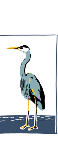 Heron Graphic