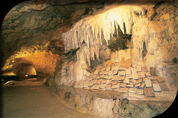 Grottes pétrifiantes de Savonnières