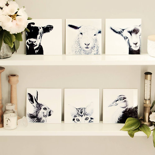 The Innocence Collection / CERAMIC ART TILE