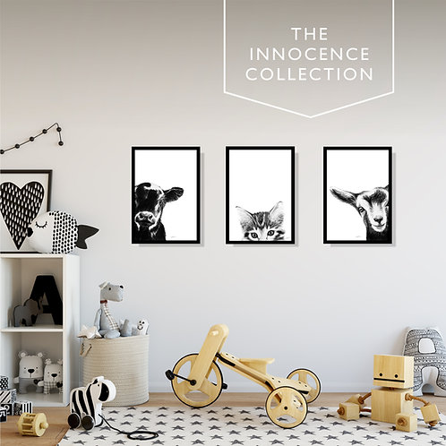 The Innocence Collection / ART PRINTS