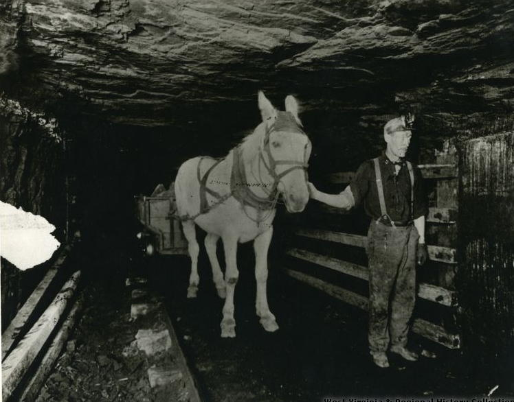 3 miner & horse (2)