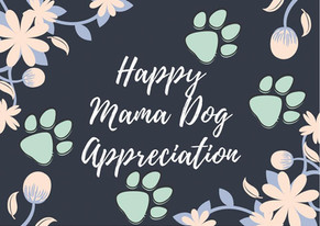 Mama Dog Appreciation April 25-May 9