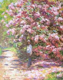 By the Rhododendrons