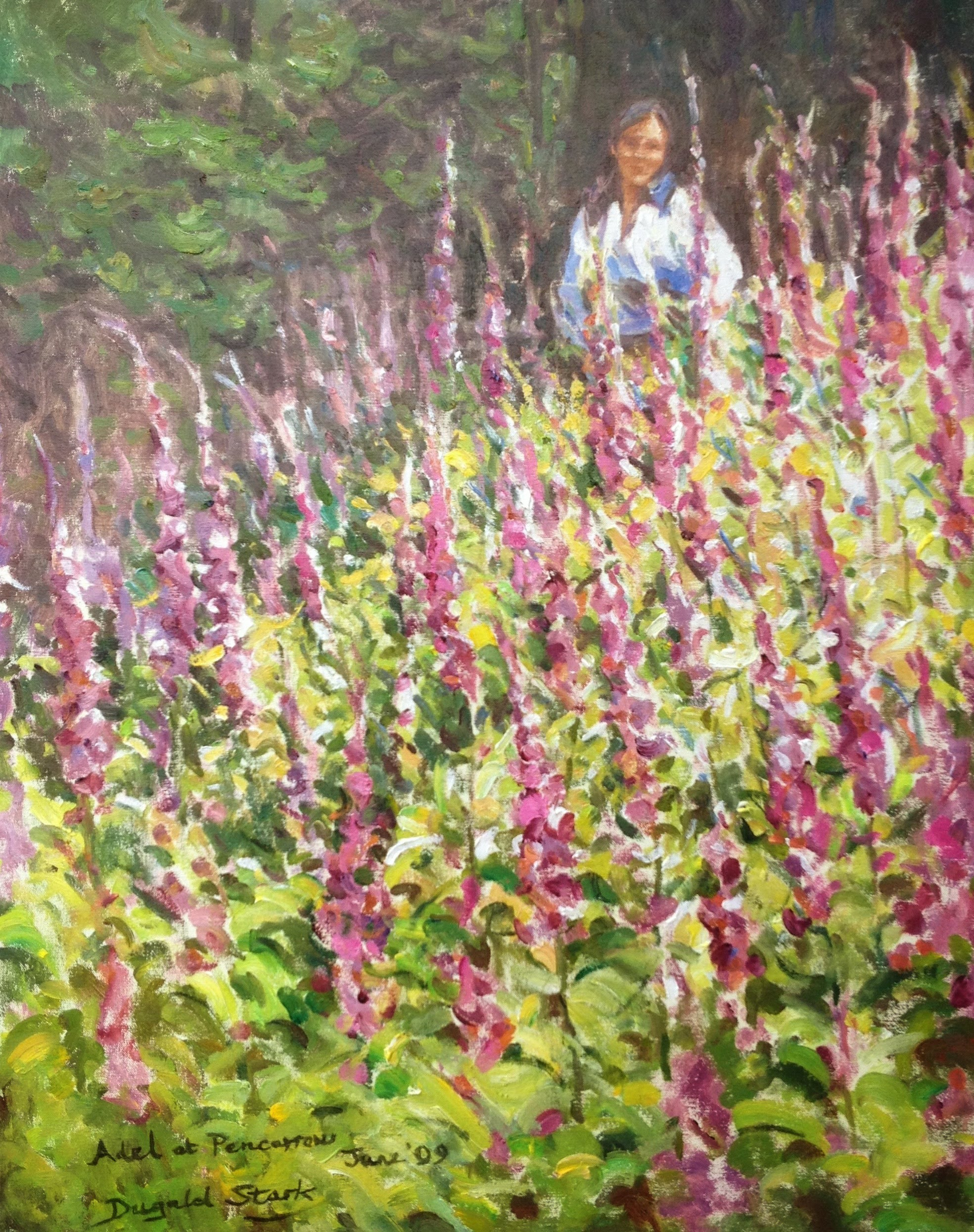 Foxgloves on the Hillside