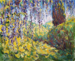 Wisteria and Cypress