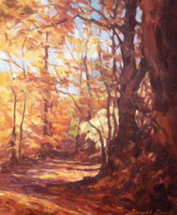 In the Woods, Autumn