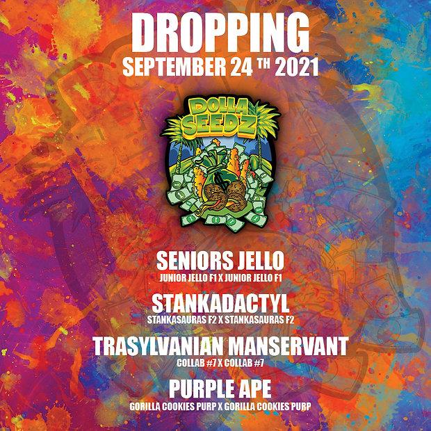 Drop Poster(1).jpg
