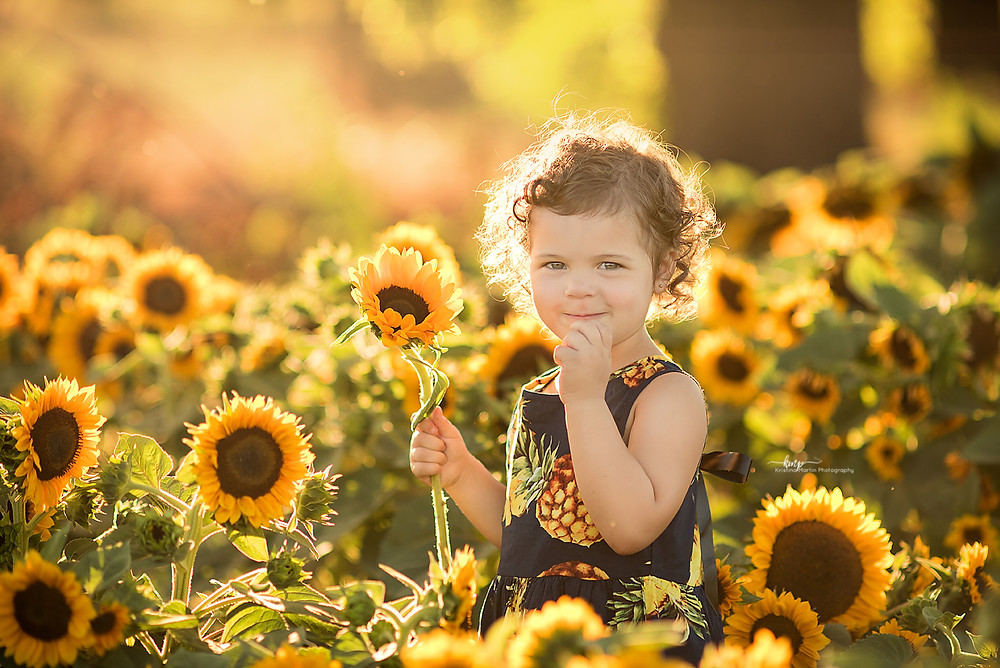 Woodland Sunflowers, Davis Sunflowers, 3 Year Session, Photo Session, Sacramento Photographer, Roseville Photographer, Lincoln Photographer, Best Portrait Photographer, Custom Photographer, Fine Art Photographer, Kristina Martin Photography, KMP, Family  Photography, Northern California Photographer
