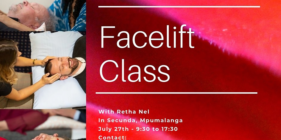 Access Energetic Facelift Practitioner Class