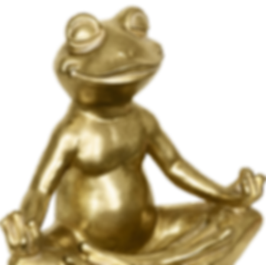 Zen Frog.png