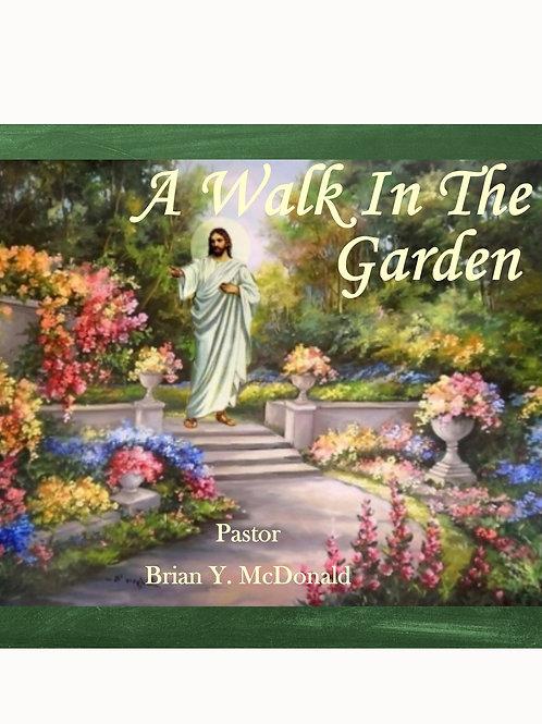 When God Takes A Walk