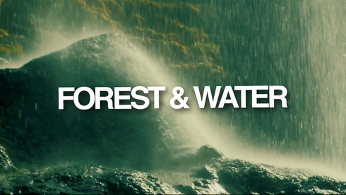Forest & Water